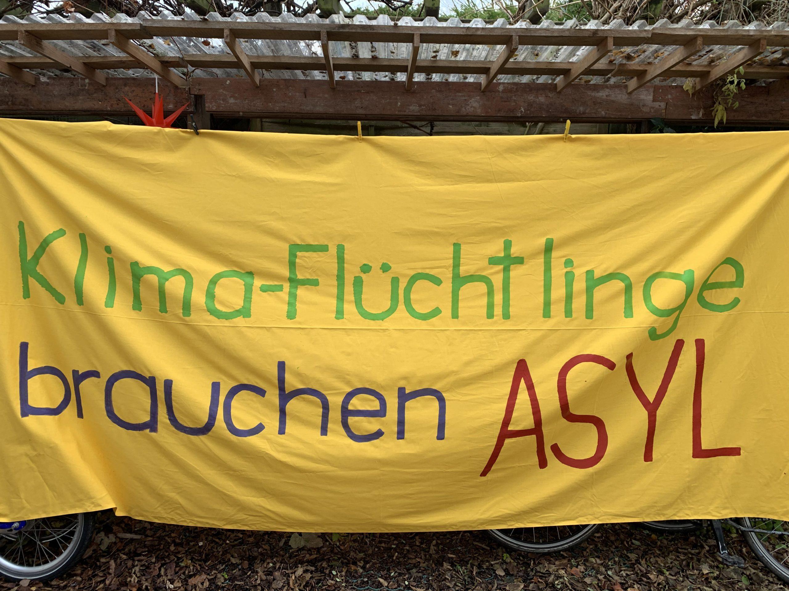 Bilder vom Klimastreik am 29.11.19 in Bergedorf